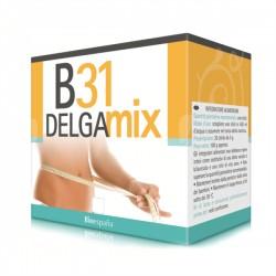 B31 DELGAMIX